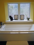 bathtub w/cat
